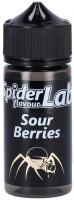 SpiderLab | Sour Berries | Aroma | 10ml in 100ml Flasche| 0 mg/ml