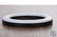 Alligator | Spectrum | LED Kohleteller UFO Ring | 20cm