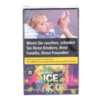 Holster | Ice Kaktuz | 20g